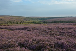 North York Moors 02